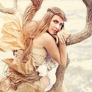 portal_fairy
