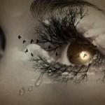eye-447428_1280
