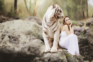 Do you Keep Inviting the Tiger in the Circle of your Life